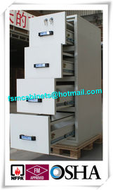 China Steel Waterproof Fire Resistant File Cabinet , Two Drawer Fire Rating Storage Cabinet distributor